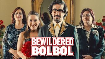 Bewildered Bolbol