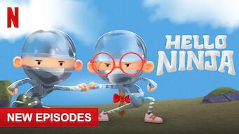 Hello Ninja: Season 3